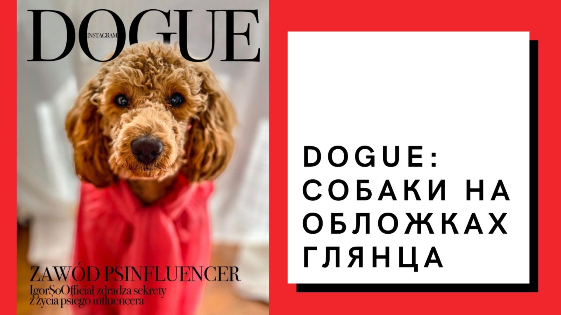 Dogue: собаки на обложках глянца