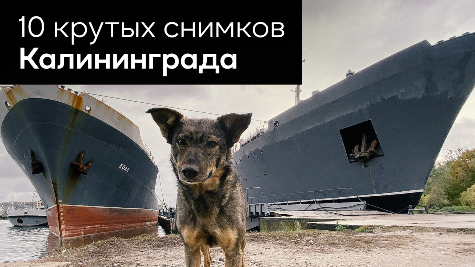 10 крутых снимков Калининграда