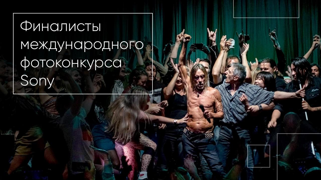 Фото: финалисты международного фотоконкурса Sony